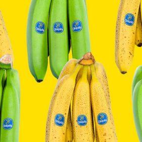 Gesunde Snacks können grün, gelb oder braun sein!