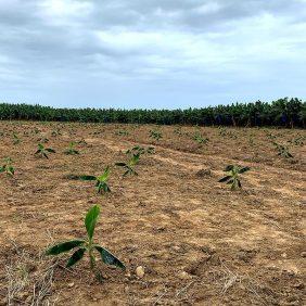 Unser Engagement für eine nachhaltige Landwirtschaft