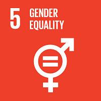 goal_5_gender equality