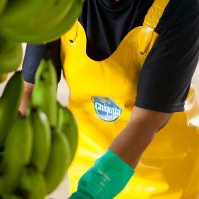 Chiquita und die Ziele für nachhaltige Entwicklung der UN: unser Engagement für einen nachhaltigen Planeten